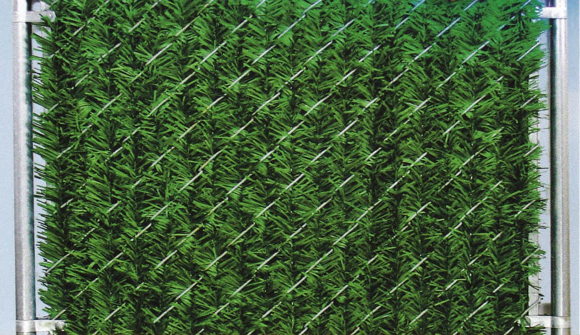 6 Chain Link Fence Forevergreen Hedge Slats Privacy